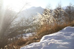 Debobrico Hautes Alpes